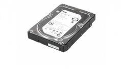 Ổ cứng Dell 2TB 7.2K RPM SATA 3.5in Hot-plug Hard Drive, 13G, CusKit